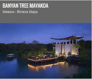 banyan-tree-mayakoba